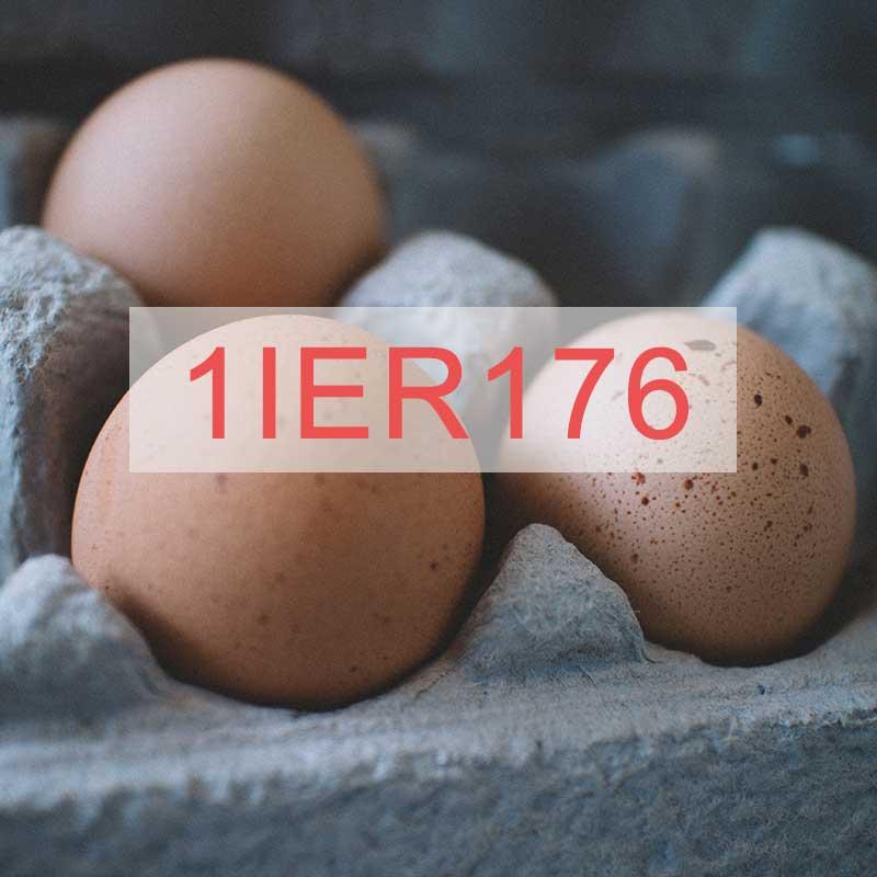 1IER176