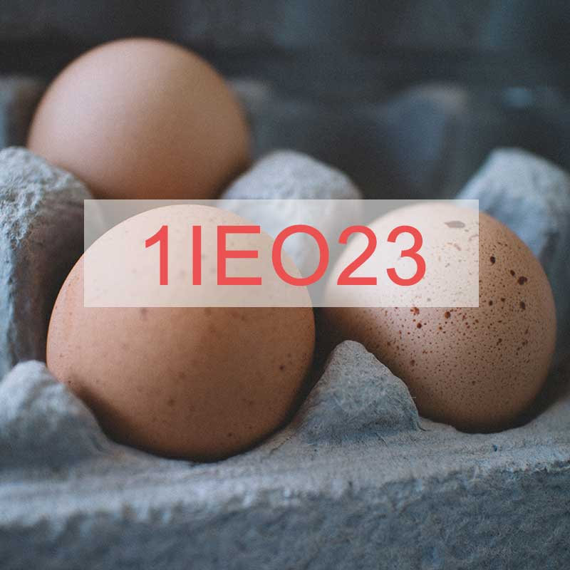 Carrickbaggot Free Range Eggs – Farm Code: 1IEO23